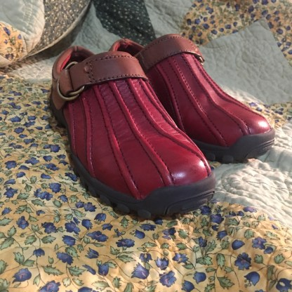 Cherry Red and Brown Bass Women Shoes