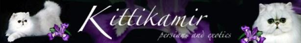 kittikamir469x68banner