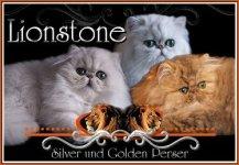lionstonecats.de