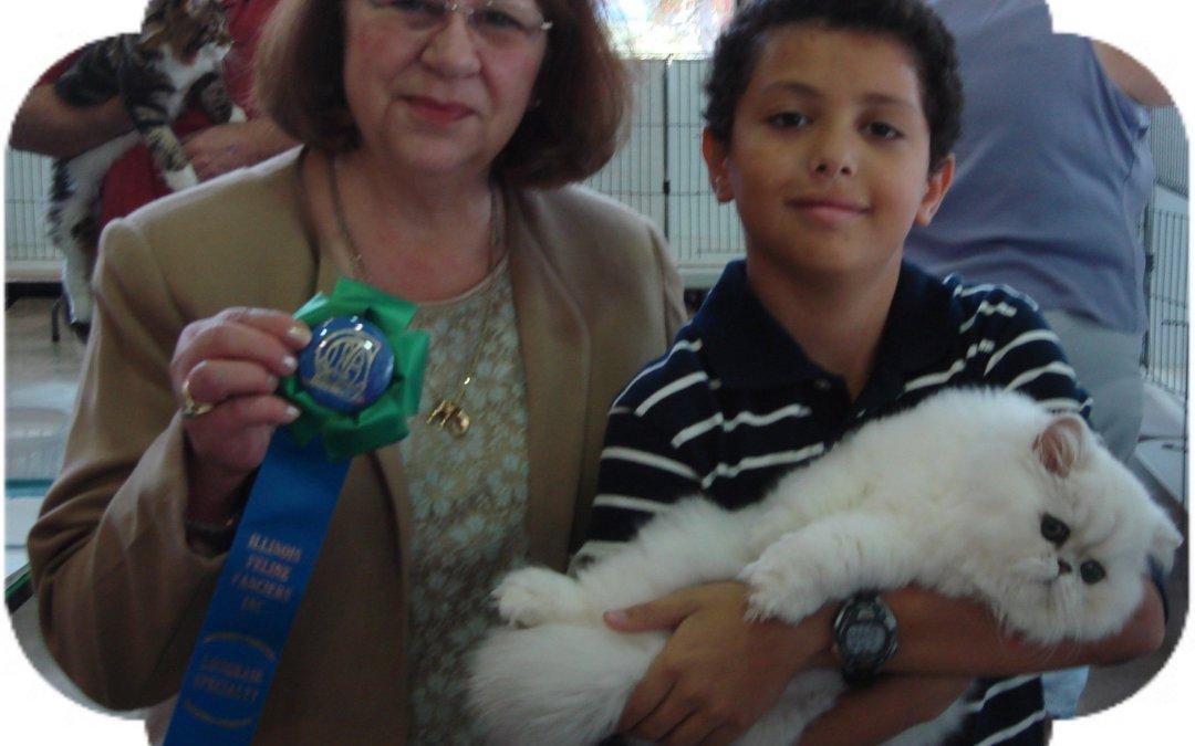 Illinois Feline Fanciers' cat show Springfield 10/15-10/16 2011