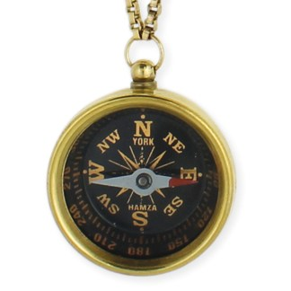 Silver Fever® Working Compass Necklace