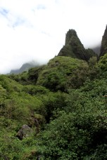 Iao valley state park 011