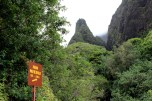 Iao valley state park 014