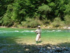 Fly Fishing Austria - River Ybbs