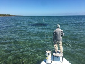 Florida keys flats fishing