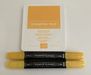 Mango Melody Stamp Pad and Stampin Blends Combo Pack
