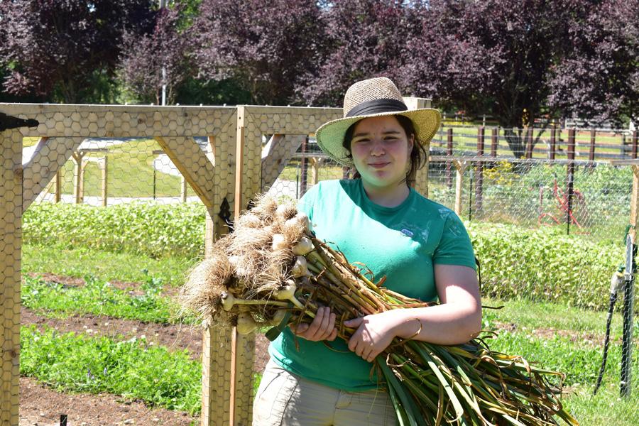 Gracie our farm associate