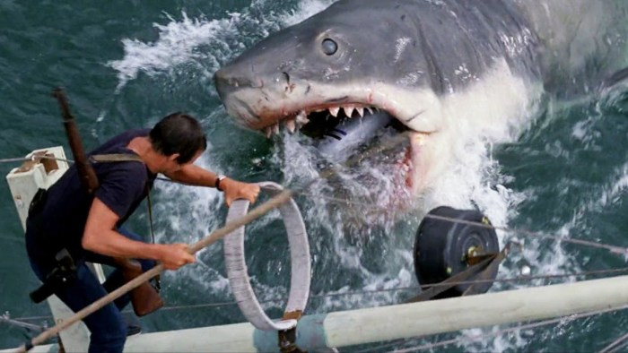 Jaws (1975) 5