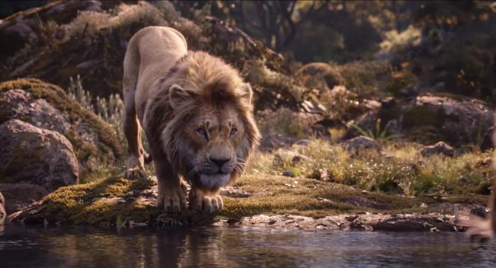 The Lion King (2019) Image 2
