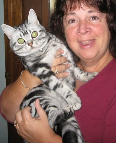 Image of woman holding American Shorthair silver tabby cat with large green eyes