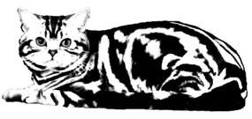 Silver Shorthairs logo image of large American Shorthair silver tabby cat clip art