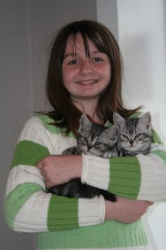 Image of Girl in striped green sweater holding two adorable American Shorthair silver tabby kittens