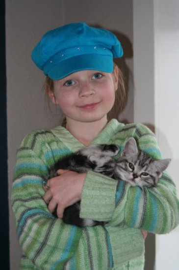 Image of girl in blue hat cuddling an American Shorthair silver tabby kitten