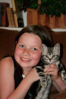 Image of girl holding gray American Shorthair silver tabby kitten