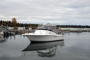 Door County Salmon Fishing Charters