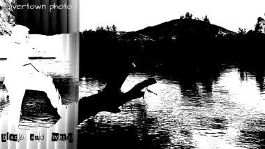 Crno i bijelo foto 10