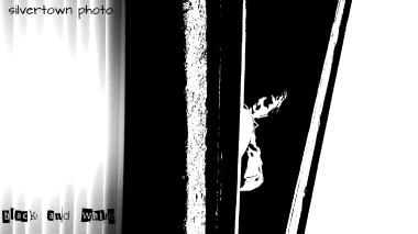 Crno i bijelo foto 18