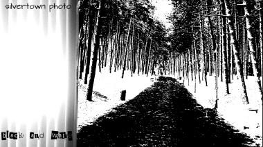 Crno i bijelo foto 21