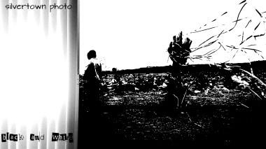 Crno i bijelo foto 27