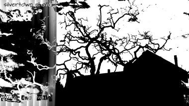 Crno i bijelo foto 8