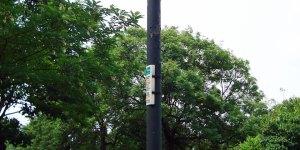 S07 - Hardy Road / Ingleside Grove