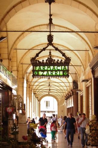 Bologna la dotta 2013-5