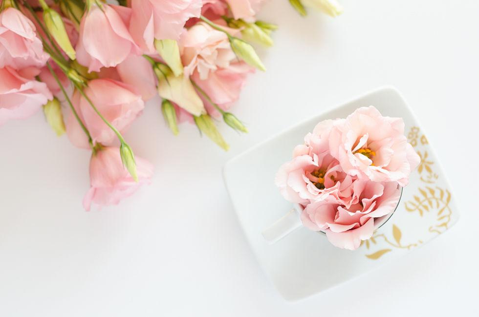 foto piatto e fiori rosa socialmediabiondina