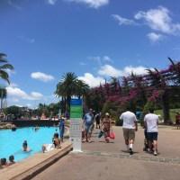 Visitando a ensolarada Brisbane