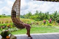 azadi hammock