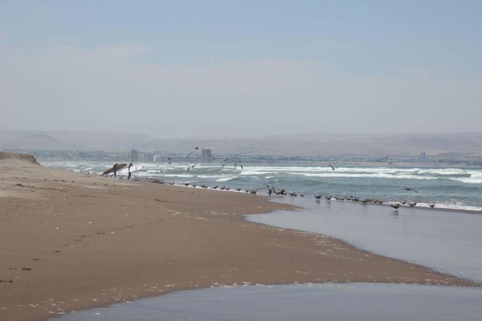 Chile_Arica