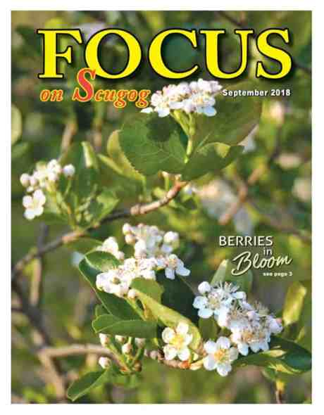 Focus on Scugog Article About Silvio's Farm in Port Perry ON Canada