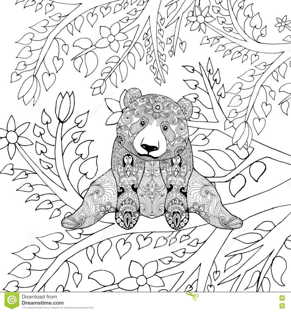 Cute Panda Bear On Tree Branches Stock Vector   Illustration Of