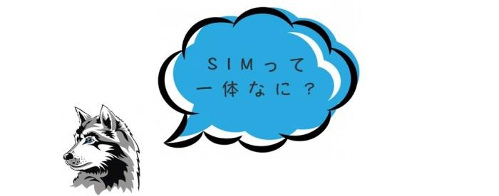 SIMとは