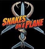 snakesonaplane graphic