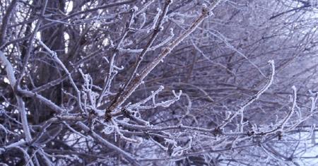 blue season  - photo by jeremy clarke
