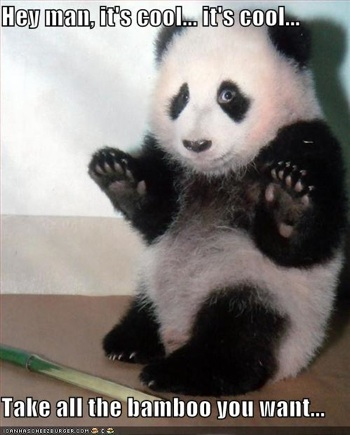 i can haz cheezburger pacifist lolpanda