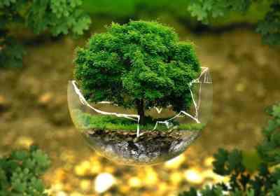 Hoy, día 24 de octubre, se celebra el Día Internacional contra el Cambio Climático