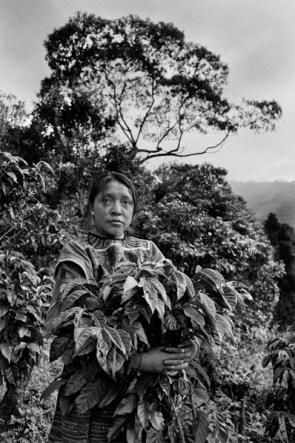 Luchadoras - Mujeres rurales en el mundo (libro)