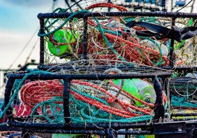 Un nuevo informe muestra que la sobrepesca es mayor de lo que comunica la Comisión Europea