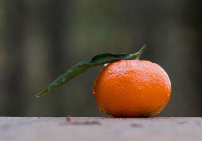 Rocío y la fruta envenenada