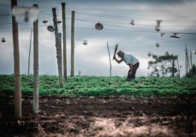 Contamos: El clamor del campesinado por existir en Colombia