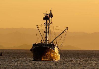 Varias ONGS lanzan propuestas para las evaluaciones de los acuerdos de pesca y su impacto por la flota extractiva