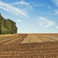 Aumentan los  fármacos contaminantes en tierras agrícolas, procedentes de depuradoras