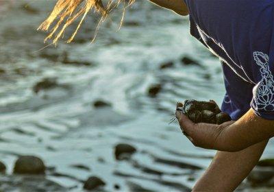 Mujeres navegantes y de orilla: Innovación y tradición con sabor a mar