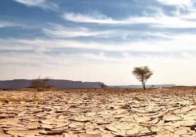Un nuevo sistema monitoriza la sequía en tiempo real