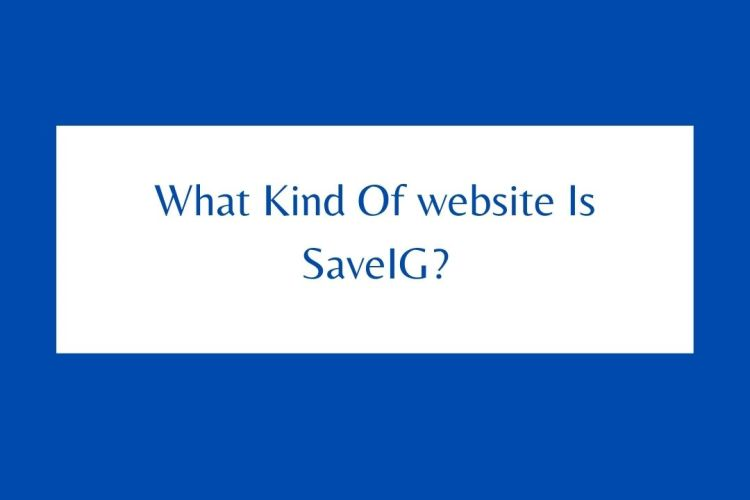 What Kind Of website Is SaveIG