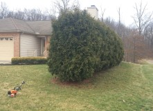 Simlawn LLC Landcaping Girard Ohio