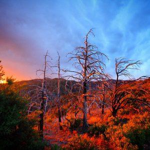 Sunset at Chiricahua National Monument following a summer rainstorm.