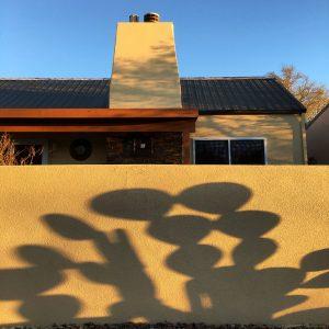 Orange tuna prickly pear shadows against a stucco wall in the community of Civano.