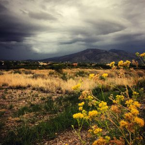 Monsoon storm moving in over the Rincon Mountains east of Tucson.